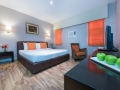 CMHS - Deluxe Room (1-King Bed)